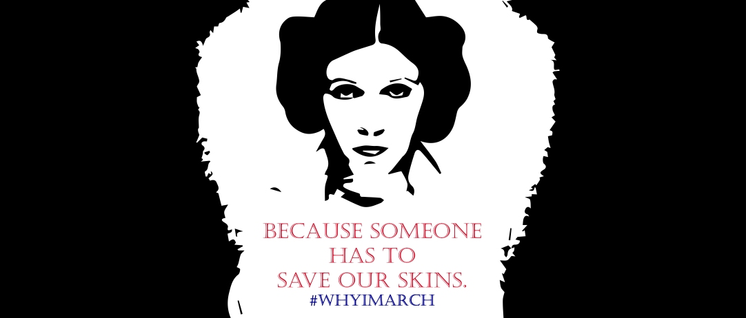 http://www.redbubble.com/people/lc1456/works/24648818-whyimarch?asc=u&c=633706-womens-march-on-washington